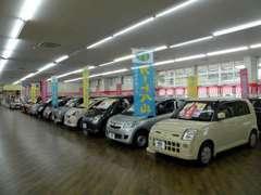 軽自動車もメーカー問わず多数展示しておりますので、お車探しのお手伝いをさせていただきます。