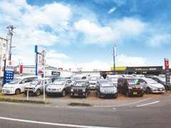 広い展示場でゆっくりとお車を吟味してください!お客様駐車スペースも広々としておりますのでご家族連れでも安心です♪