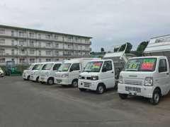 軽トラ、軽バスはもちろん、他中型・大型トラックや特殊車両も取り扱い中!業販も可能!