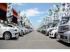 ★39.8の車を中心に、現在120台の展示車がございます。