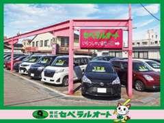 ☆軽自動車・コンパクトカー・ミニバン・SUVまで常時150台展示!セベラルオートだから見つけることができる特選車勢揃い!