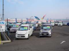 広々とした展示場で、軽自動車から普通車まで幅広い品揃え☆