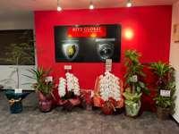RITZ GLOBAL リッツグローバル null