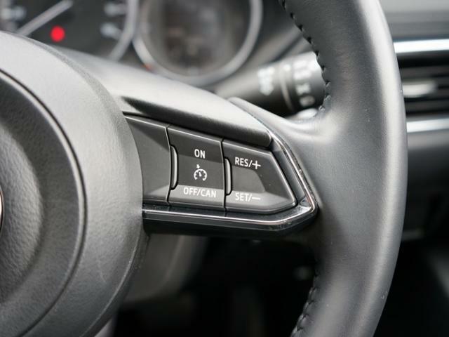 ステアリングには各種スイッチを配置。左手は主にオーディオの操作を、右手は「クルーズコントロール」の操作を行えます。