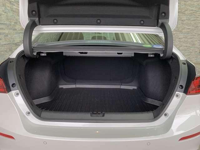 凹凸が少なく開口部も大きい、大容量のトランクルームです。