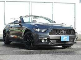 国内未登録車です!本国イギリスより導入した新車でございます!