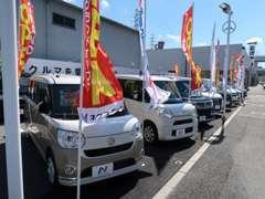 在庫が豊富でミニバン、コンパクト、軽自動車を常時20台前後展示しております。