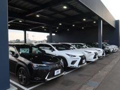 北陸最大級!正規輸入車展示!輸入車が大好きな当店のスタッフが豊富な知識とご提案でおもてなし!