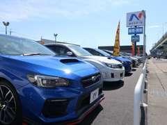 広い展示場には常時80台前後のスバル車を展示。納得いくまでお車を吟味していただけます。