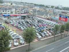 広大な敷地に展示車がずらり!モコからシーマまで、幅広いラインナップを取り揃えております!