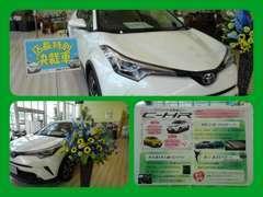 新車とU-Carを併売する当店はお車の最新情報が満載です。