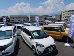 軽自動車・ミニバン・SUV、コンパクトカー等を幅広く取り扱いしております。