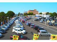 ★ずらっと並ぶ当店の展示車。約130台ございます。ぜひぜひお気軽にお越し下さい♪★