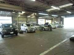 新車、サービスとの複合店舗で各種保険等の取扱いもしておりますのでお気軽にご相談下さい。
