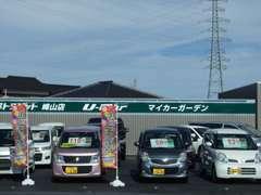 メーカーや車種を問わず、多彩な中古車を展示中!