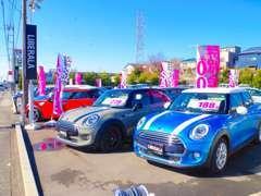 広々展示場でたくさんのお車とお待ちしております。