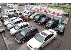 第一展示場、第二展示場に分けて約40台を展示しています。新車から格安車両まで取り扱いしております。