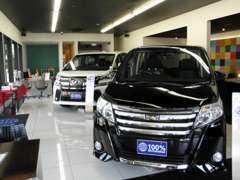 清潔感のある広々としたショールームでごゆっくりとご希望の車種をご覧頂けます。