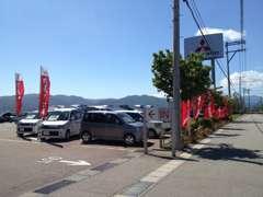 広い展示場は緑豊かで車を眺めているだけで癒される空間です